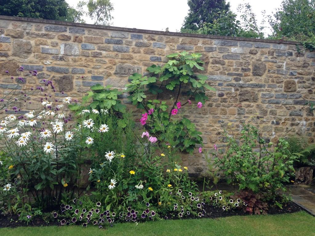 'Outstanding' Garden